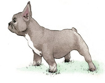 French Bulldog - set of 5 Blank Note or Greeting Cards