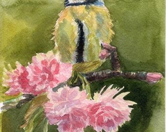 Tomtit Bird Original watercolor painting