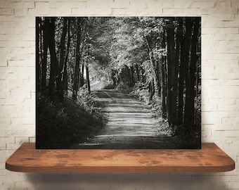 Country Road Photograph - Fine Art Print - Wall Decor - Farmhouse Decor - Black White Photo - Wall Art - Country Decor - Back Roads - Trees