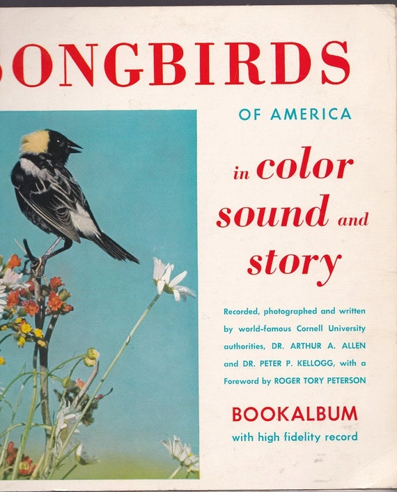 Songbirds of America in Color Sound and Story Bookalbum + Dr. Arthur A. Allen and Dr. Peter P. Kellogg + 1954 + Vintage Book