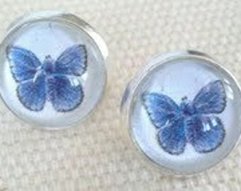 Butterfly Stud Earrings. Hand made in Brooklyn. Lovely blue Butterflies under Crystal clear Glass domes.