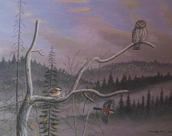 Pigmy Owl With Siberian Tits (Finland), 2015, Acrylic On Canvas, Original Painting, Richard Hull Fine Art