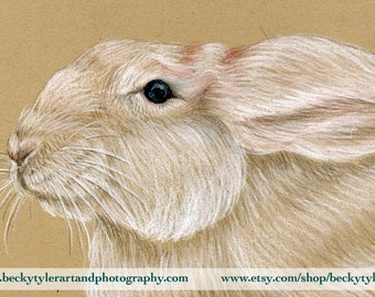 White Rabbit Original Drawing, Eco Friendly Art