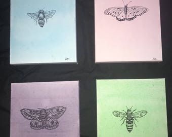 Pastel Insects