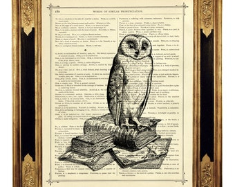 Owl Art Print Pile of Books Library Literature Dictionary Wall Art - Vintage Victorian Book Page Art Print Steampunk Bird