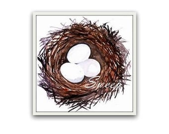 bird eggs watercolor painting bird nest wall art nursery baby boy nursery decor white three 3 egg home poster family room print nature