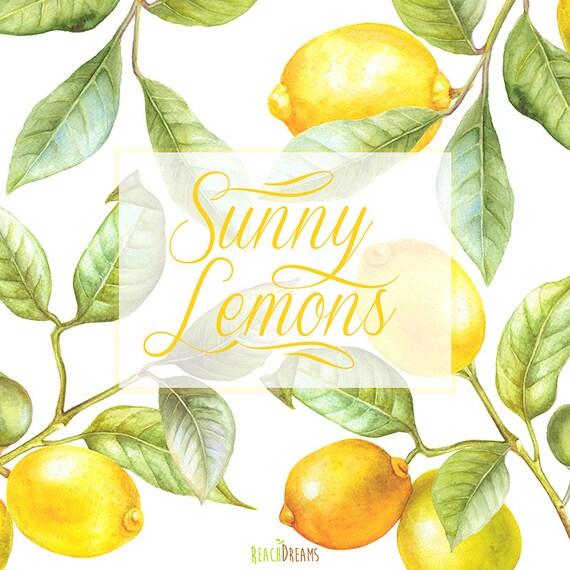 Lemon Watercolor Clipart Hand Painting Fruit Lime Kitchen