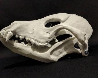 Canine Skull Mask