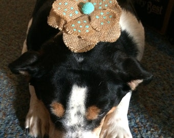 Burlap Flower Doggie  Barrette. This is a large barrette.  4 inches. Add some color to your pup.