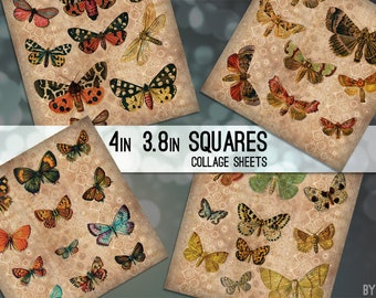Digital Collage Sheet Vintage Butterflies 3.8 Inch and 4 x 4 Square Printable Images for Coasters Scrapbooking Cardmaking JPG C0008