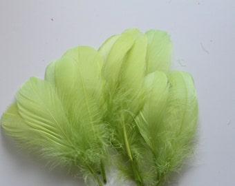 Lime Green Goose Nagoire Feathers / 10 Loose Feathers / 4-6 inches
