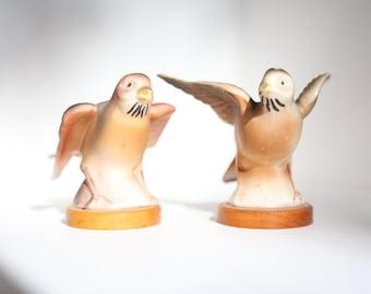 Brown Bird Salt and Pepper Shakers