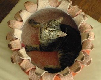 Cat bed/cat house/cat cave/ houseleek felted cat bed