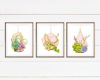 Hanging Terrarium Succulent Art, Cactus Succulent Plants, Watercolor Plants Gift For Her, Botanical Print, Cactus Nursery, Himmeli set of 3