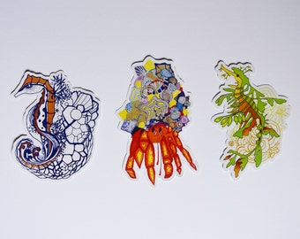 Set of 3 Sea Creature Stickers: Seahorse, Crab, Leafy Sea Dragon.
