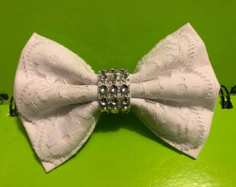 Lace dog bow tie, bow tie