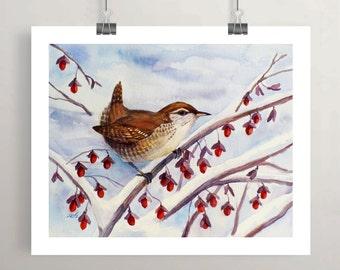 Winter wren print, bird in snow, red berries watercolor wall art by Janet Zeh Original Art