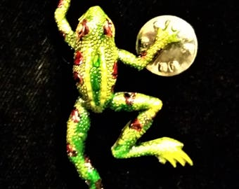 Frog Brooch Pin Transparent hand-painted silver tone 2.25 inches long 1 inches wide