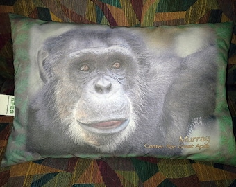 Ape Pillow  with Murray the Chimp photo