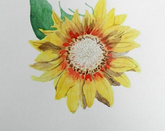 Sunflower, 11x15 Original Watercolor Painting