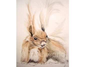 Print of an ink- and water colour painting, sepia shaded variation - Squirrel I (8 x 12 inch)