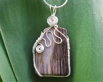 Petrified Wood Wire Wrapped Pendant