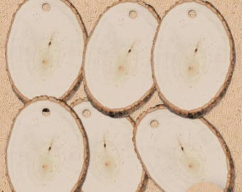 Wood Slice Tags Natural Wood Tags Wooden Tags Tree Slice Tags Wood Burning Slices 6pcs