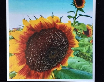 Sunflower-Ceramic Coaster-Yellow Sunflower Decor-Set of 4-Hostess-Bridal-Birthday gift-teacher gift-Mothers Day-housewarming-flowers