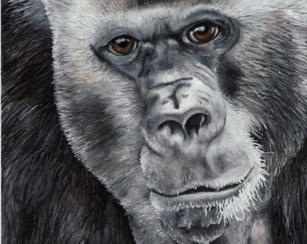 Limited Edition Print of Original Gorilla Watercolor Painting