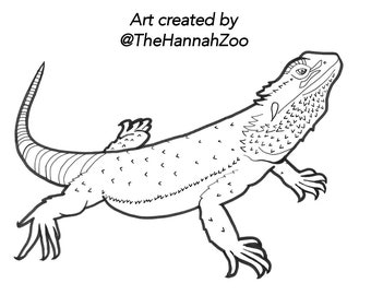 Reptile Coloring Pages (8 pack)
