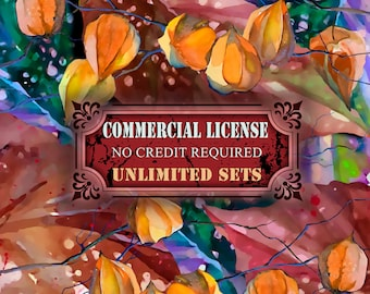 Whole Shop Commercial License NO Credit required - Unlimited present and future sets from IstarArt team