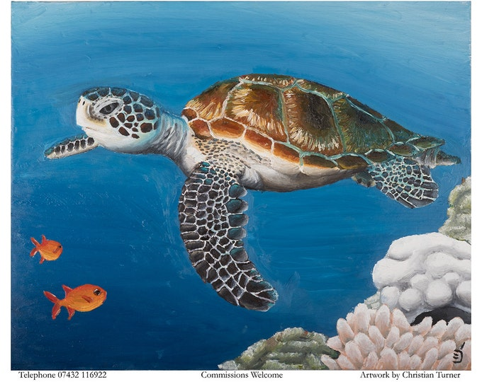 Turtle - original oil painting on box canvas by Christian Turner