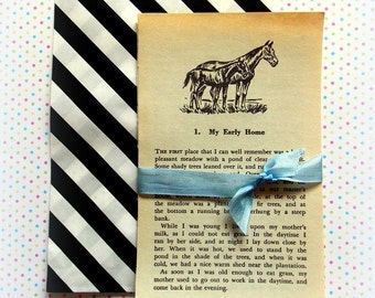 Vintage Black Beauty Book Pages
