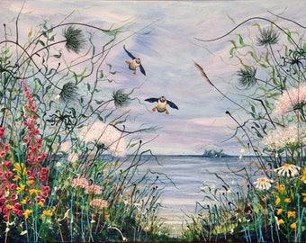 Summer Visitors, North Berwick. Puffins. Seabirds