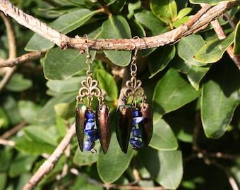 Earrings with beetle wings Elytra & gemstone Lapis Lazuli, handmade / Earrings with beetle wings, bronze