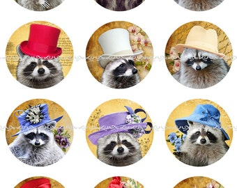 Raccoons in Hats Magnets or Pin Back Buttons, 1 Inch, 1.25 Inch, 2.25 Inch, Different Quantites, Raccoon Pins, Wildlife Magnets