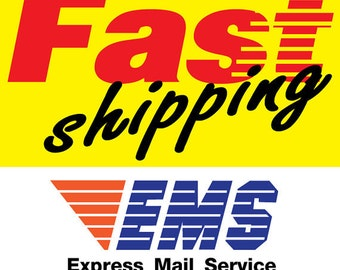 Fast shipping EMS