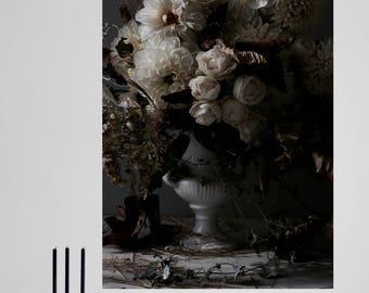 dahlia - fine art digital print - hahnemuehle fine art photo rag - 50 x 70 cm