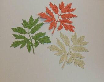 Leaf Style # 3 Die Cuts, Leaf Die Cuts