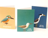 Water birds notecard set ...
