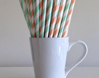 Mint Green and Peach Paper Straws Mint and Coral Striped Party Supplies Party Decor Bar Cart Cake Pop Sticks  Party Graduation