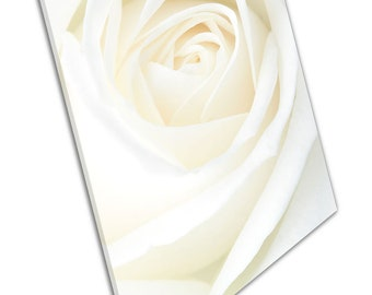 large Single white cream Rose flower Floral Art Ready to Hang Canvas X1834