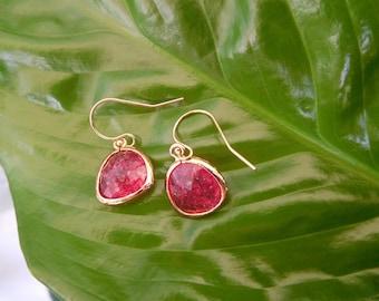 Ruby glass stone gold filled hook earrings