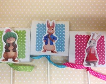 Peter Rabbit Party Lollipop Favors - Set of 10