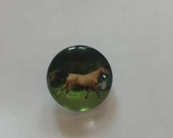 Snap 1.8 cm Brown horse