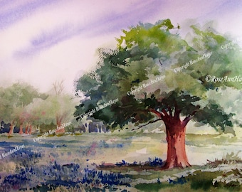 Live Oak Tree and Bluebonnets Watercolor Painting 5 x 7 Print Landscape Texas Tree Wildflower
