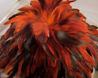 30 Orange Federn lose Schlappen halbe Bronze gefärbt 3 bis 6 Zoll K81