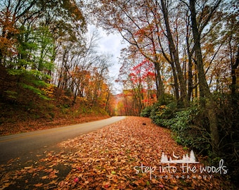 Blue Ridge Parkway Scenic Road; Landscape, Nature Photography, Blue Ridge Mountains, Autumn Leaves, North Carolina, Fall Trees