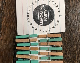 Mint Green Birch Mini Clothespins Set of 18