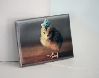 Chicks in Hats Chicken in A Blue Crown Rigid Baby Animal Magnet